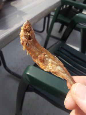 Fischimbiss Krebs - Meefischle
