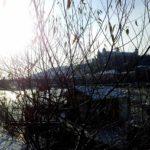 Winter Würzburg Dezember 2012