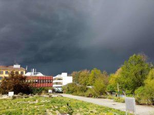 Unter Dunklen Wolken: Botanischer Garten in Würzburg