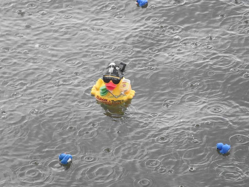 Badeentenrennen 2011