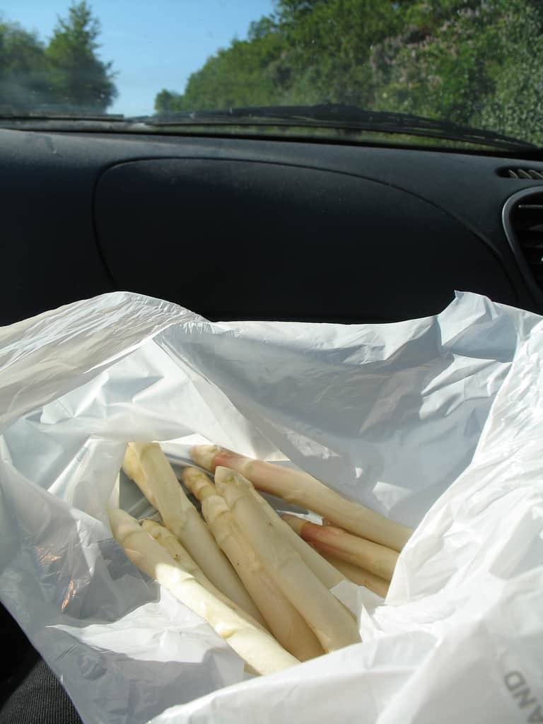 Spargel To Go